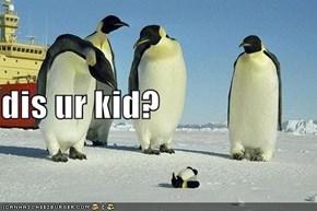 dis ur kid?