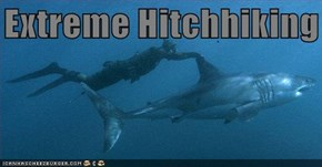 Extreme Hitchhiking