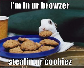 i'm in ur browzer  stealin ur cookiez