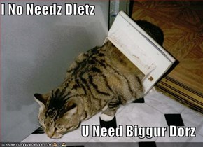I No Needz DIetz  U Need Biggur Dorz