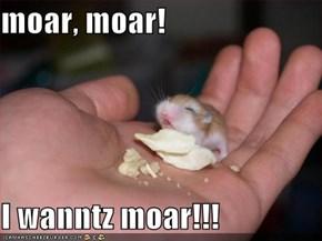 moar, moar!  I wanntz moar!!!