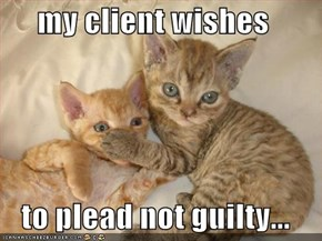 my client wishes    to plead not guilty...
