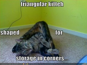 triangular kitteh shaped                              for storage in corners...