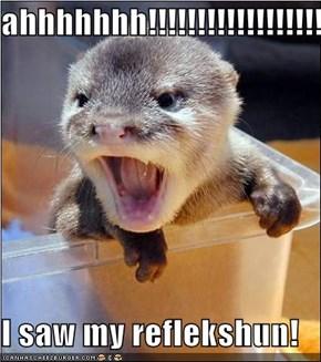 ahhhhhhh!!!!!!!!!!!!!!!!!!!!!!!!!  I saw my reflekshun!