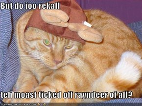 But do joo rekall  teh moast ticked off rayndeer of all?