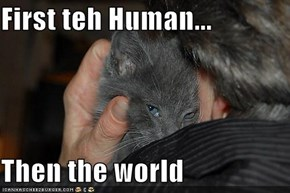 First teh Human...  Then the world