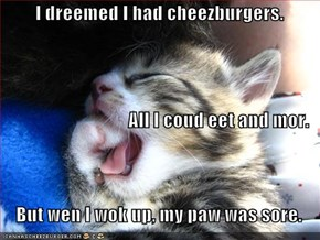 I dreemed I had cheezburgers. All I coud eet and mor.      But wen I wok up, my paw was sore.