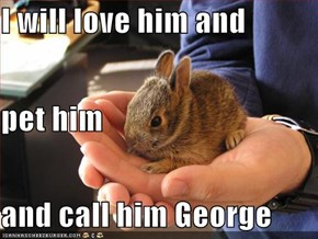 I will love him and pet him and call him George