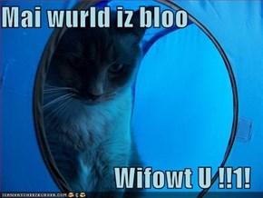Mai wurld iz bloo  Wifowt U !!1!