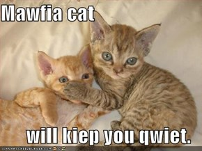 Mawfia cat  will kiep you qwiet.