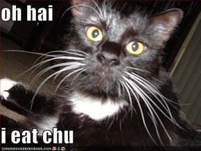 oh hai  i eat chu
