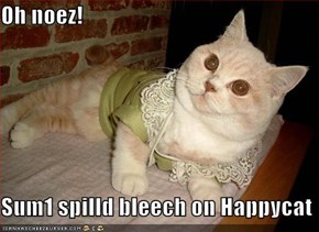 Oh noez!  Sum1 spilld bleech on Happycat