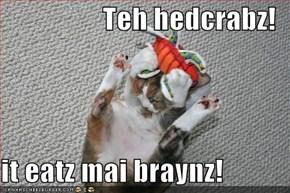 Teh hedcrabz!  it eatz mai braynz!