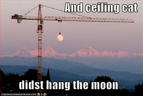 And ceiling cat  didst hang the moon