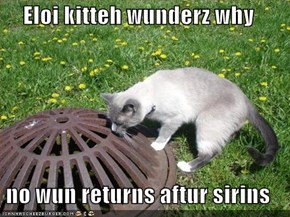 Eloi kitteh wunderz why  no wun returns aftur sirins