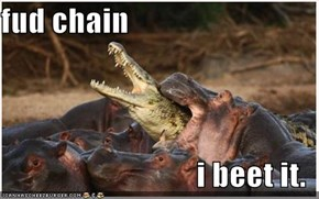 fud chain  i beet it.