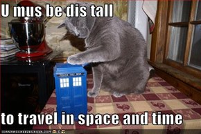 U mus be dis tall  to travel in space and time
