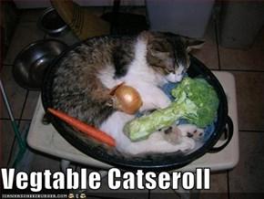 Vegtable Catseroll
