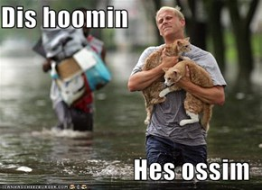 Dis hoomin  Hes ossim