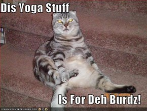 Dis Yoga Stuff  Is For Deh Burdz!