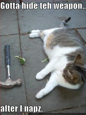 Gotta hide teh weapon...  after I napz.