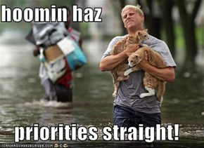 hoomin haz  priorities straight!