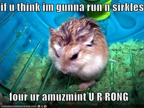 if u think im gunna run n sirkles  four ur amuzmint U R RONG