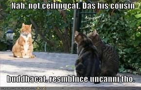 Nah, not ceilingcat. Das his cousin  buddhacat. resmblnce uncanni tho.