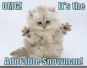 OMG!                    It's the     Adorable Snowman!