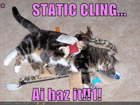 *         STATIC CLING...                   Ai haz it!!1!