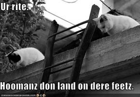 Ur rite.    Hoomanz don land on dere feetz.