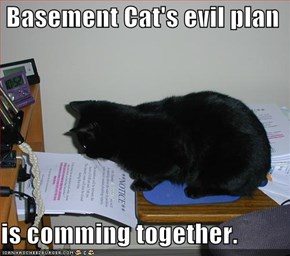 Basement Cat's evil plan  is comming together.