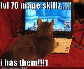 lvl 70 mage skillz.....  i has them!!!1