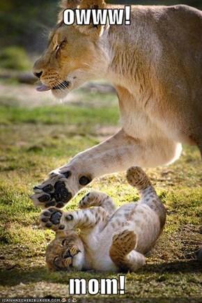 owww!  mom!