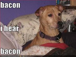 bacon i hear bacon