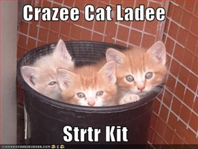 Crazee Cat Ladee  Strtr Kit