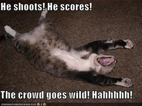 He shoots! He scores!  The crowd goes wild! Hahhhhh!