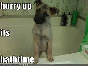 hurry up its bathtime