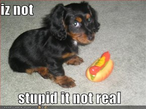 iz not   stupid it not real