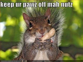 keep ur pawz off mah nutz