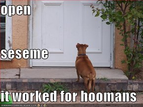 open seseme it worked for hoomans