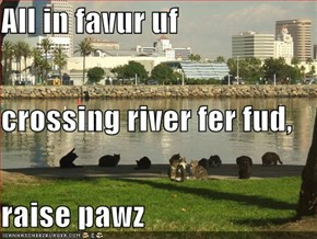 All in favur uf  crossing river fer fud,  raise pawz