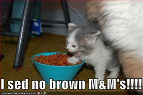 I sed no brown M&M's!!!!