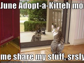 June Adopt-a-Kitteh momf  me share my stuff, srsly