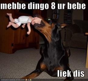mebbe dingo 8 ur bebe  liek dis