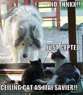 NO THNKX!! JUST CEPTED CEILING CAT AS MAI SAVIER!!