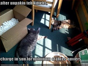 after unpakin teh kittehs,  charge in sun for miminum of three ouwers