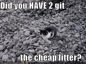 Did you HAVE 2 git  the cheap litter?