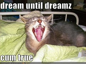 dream until dreamz   cum true