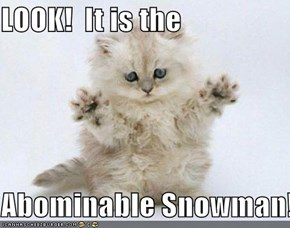 LOOK!  It is the   Abominable Snowman!!